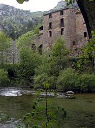 vue de la rivière